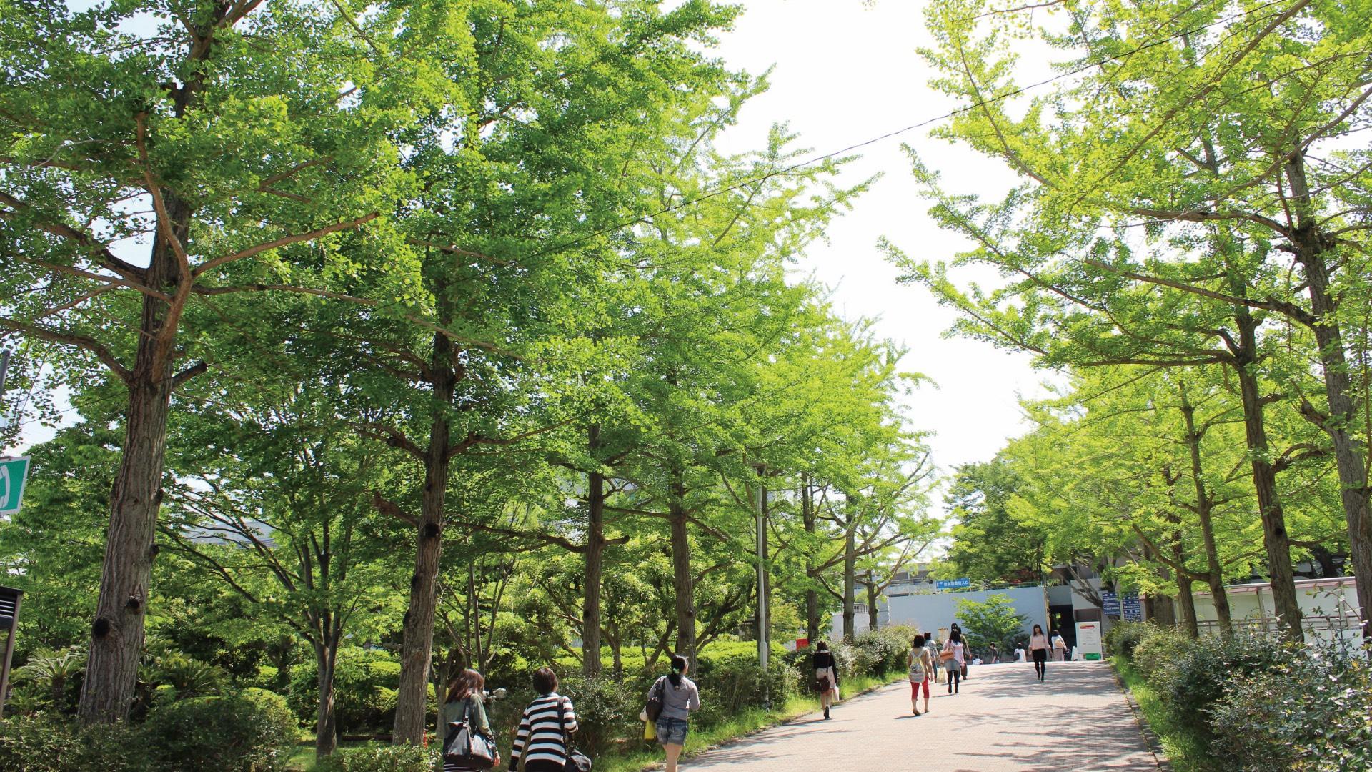 静岡大学国際連携推進機構image